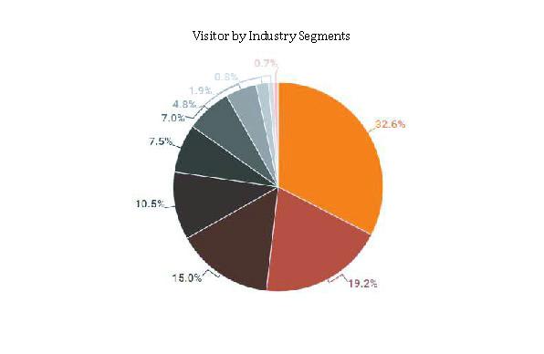 pi-chart-of-visitor-data