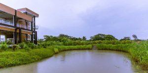 rain-water-hervesting