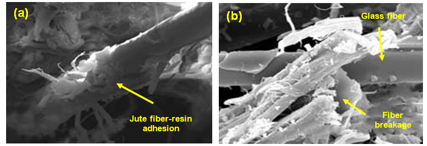 Figure 6. SEM images showing epoxy resin matrix adhesion with different fibers