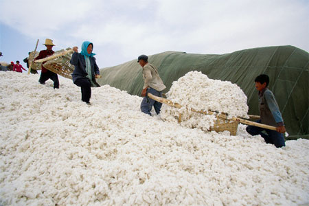 The US is preventing cotton exports from China's Xinjiang region because of  claims of being produced incorporating forced labor.