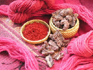 cochineal-insect-red-dyes