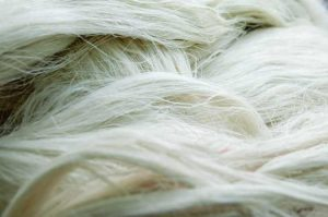 staple-fiber