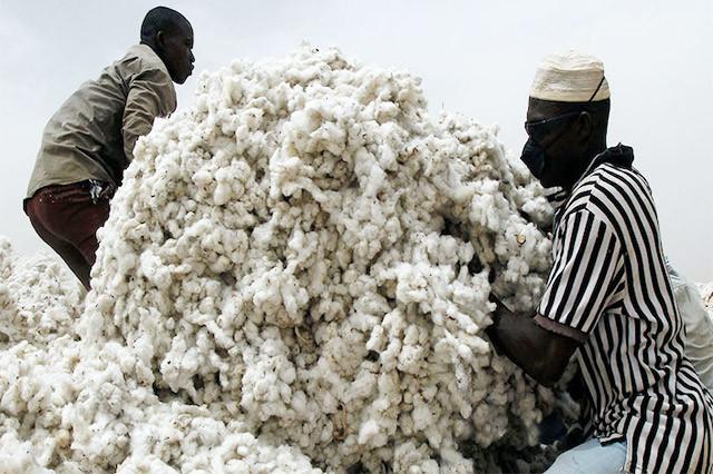 nigerian-cotton